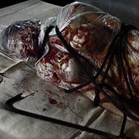 Autopsy of Imogen - 01