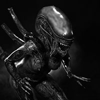 002 ALIEN Structural Perfection BW