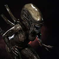 002 ALIEN Structural Perfection Col