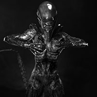 005 ALIEN Unclouded by Remorse BW