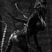 008 ALIEN Alien Life BW