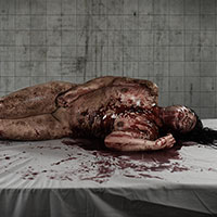 Autopsy of Becca - 05