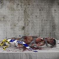 Autopsy of Becca - 02