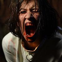 The Scream 02