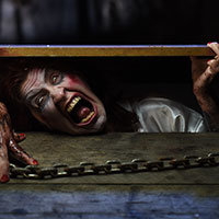 Trapped in the Cellar 2