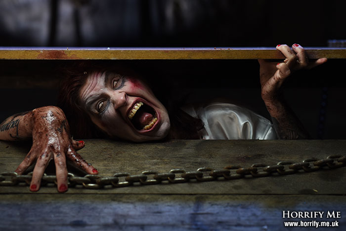Click to buy print - Trapped in the Cellar 2