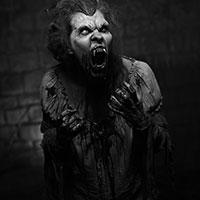 Vampire Torment BW