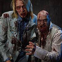 Zombie Geeks
