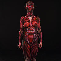 Skinned Body Paint 1 - Front