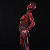 Skinned Body Paint 3 - Profile