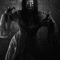 Horror of the Vampire BW