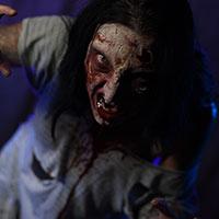 Zombie Horror