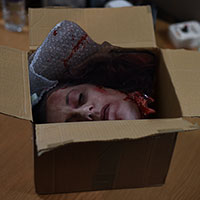 Head in a Box sequence 01