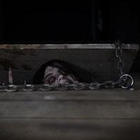 Evil Dead - In the Cellar