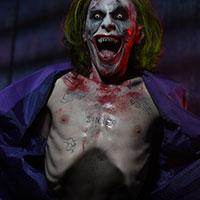 Joker - Green Hair - Wild