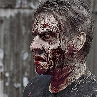 Wandering Zombie