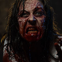 Zombie Fury