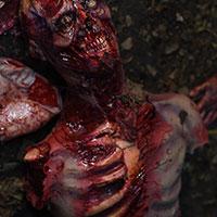 Zombie Prop ny Keith Larkin