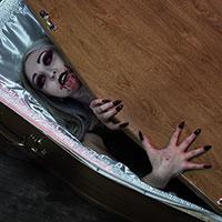 Coffin Cutie