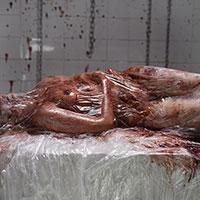 Autopsy Nightmare 11