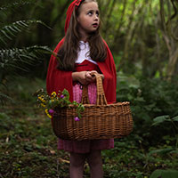 Red Riding Hood and the Big Bad Wolf 01 - Meet Red