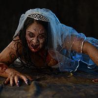 Crawling Bride
