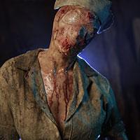Portrait of the Nurse