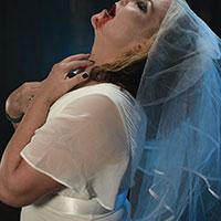 Bridal Delight