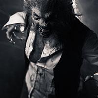The Beast - BW