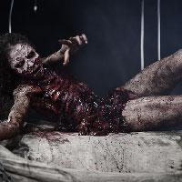 Zombie Autopsy 19 - Freedom